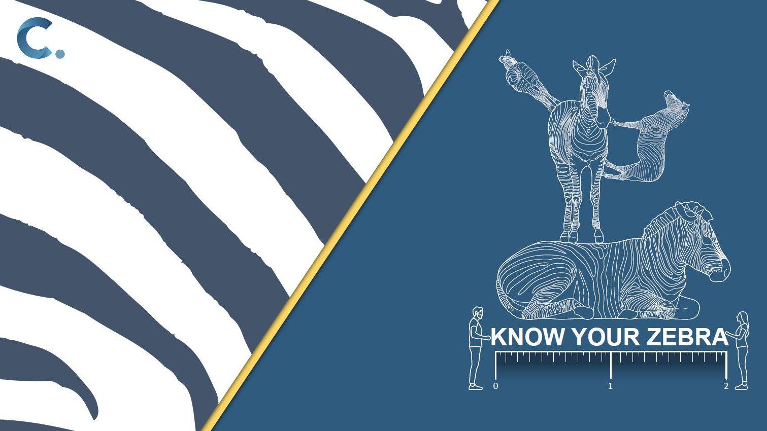 Know your Zebra, Covid ready workspaces